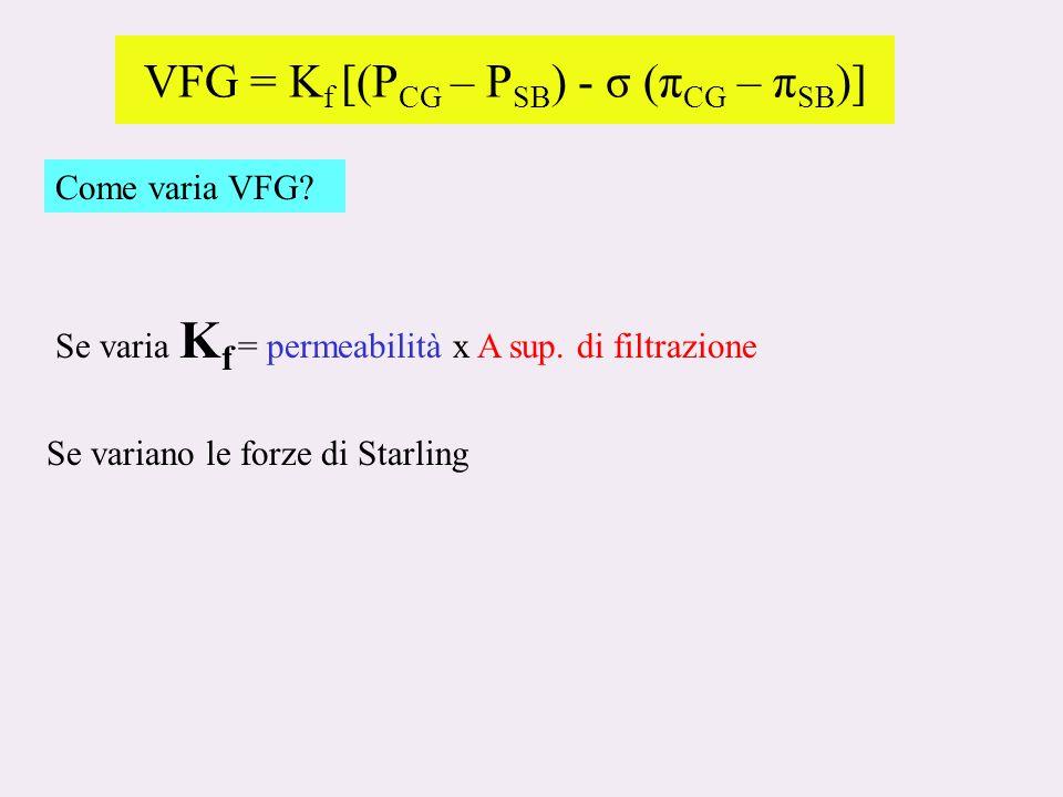 VFG = Kf [(PCG – PSB) - σ (πCG – πSB)]